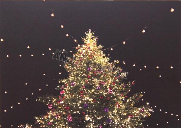Postkarte mit geschmücktem Tannenbaum