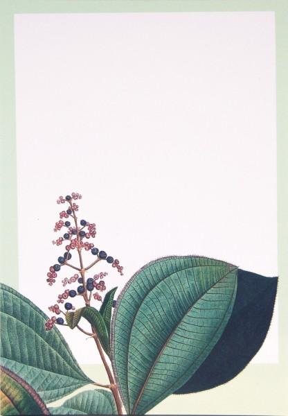 Notizblock Pflanze