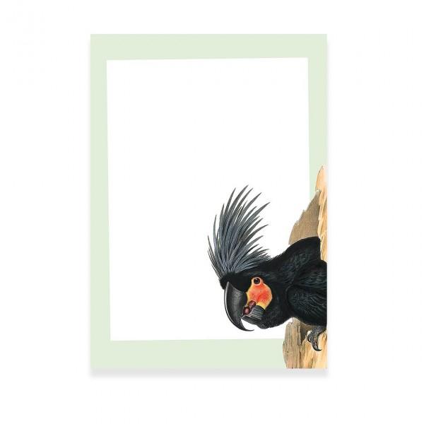 Notizblock Papagei