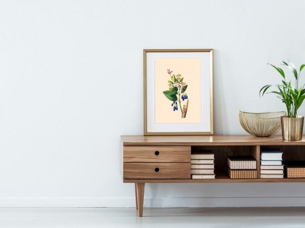 Poster Blume