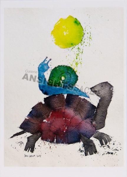 Postkarte Schildkröte & Schnecke von J.Wolf